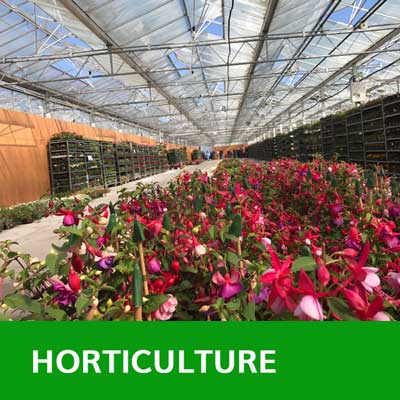 Horticulture Auctions